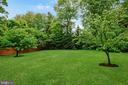 Persimmon, apple, pear, plum and apricot trees! - 4617 HOLIDAY LN, FAIRFAX