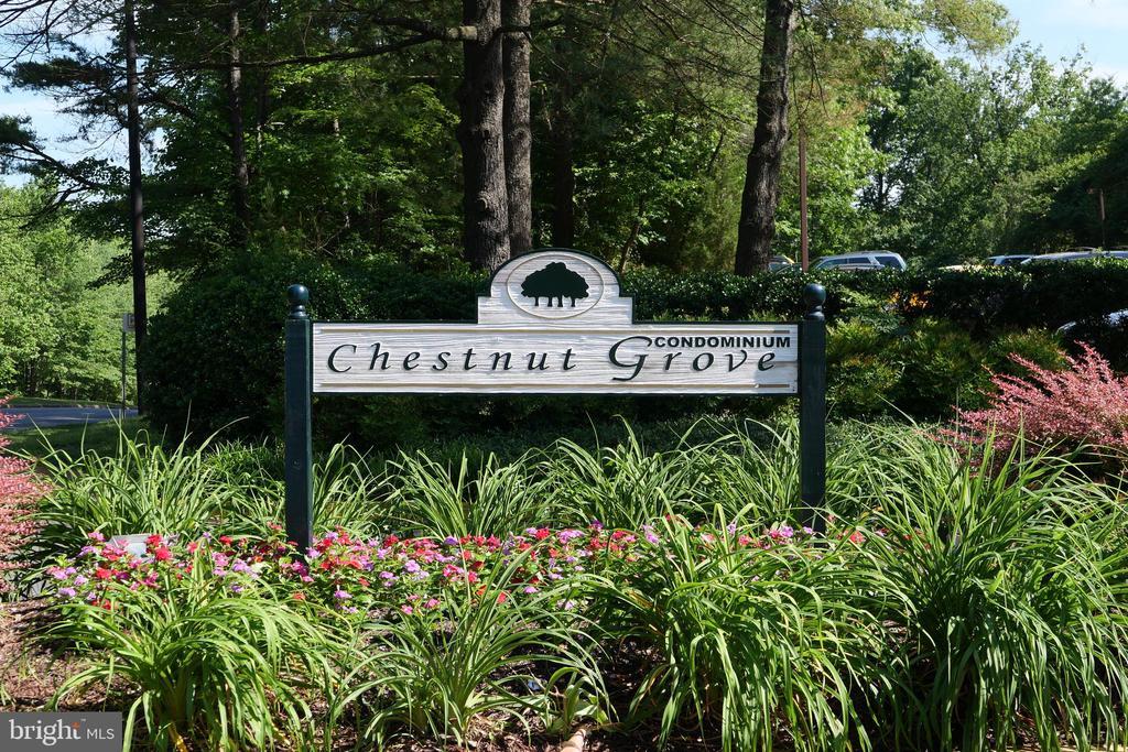 Welcome Home! - 11236 CHESTNUT GROVE SQ #161, RESTON