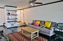 Bright Living Room - 11236 CHESTNUT GROVE SQ #161, RESTON
