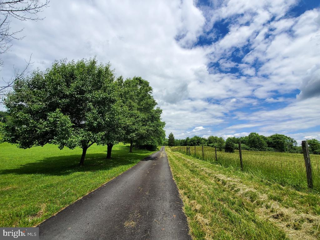 Part of the drive to your beautiful home! - 42064 BLACK WALNUT LN, LEESBURG