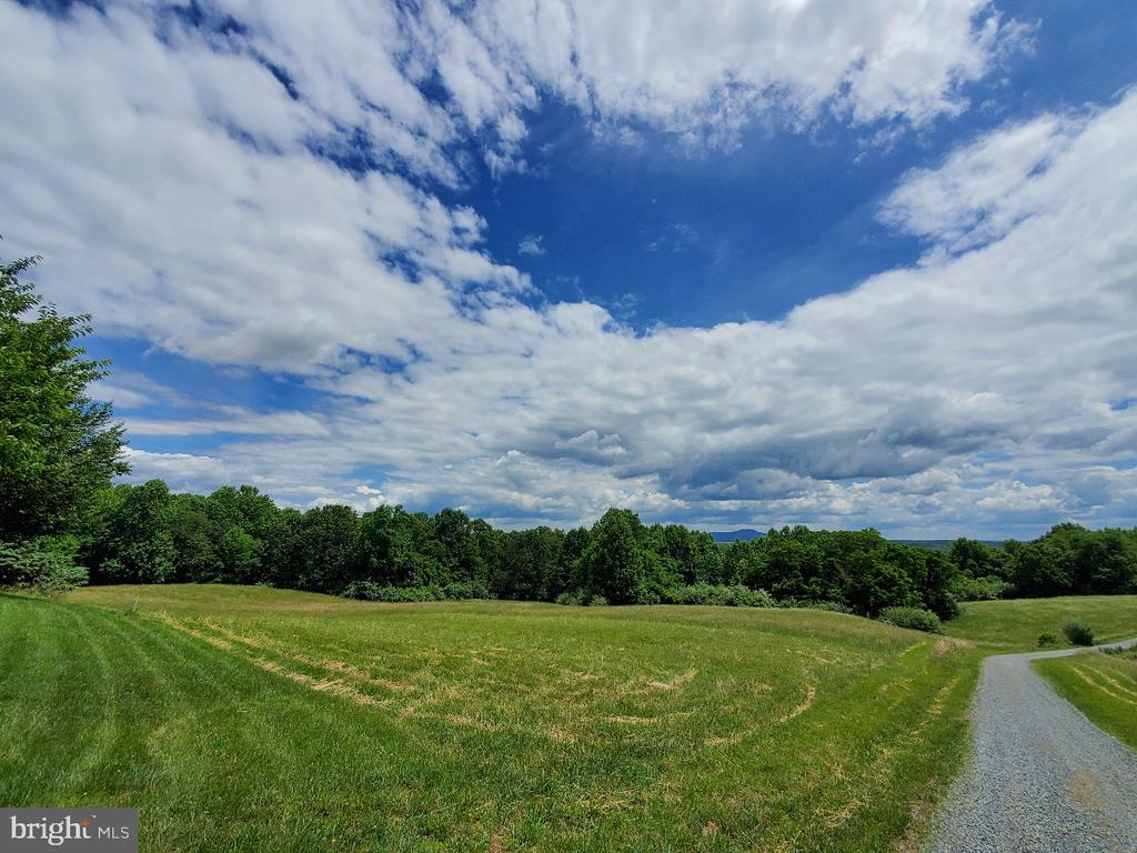 This is the view when you get out of your car! - 42064 BLACK WALNUT LN, LEESBURG