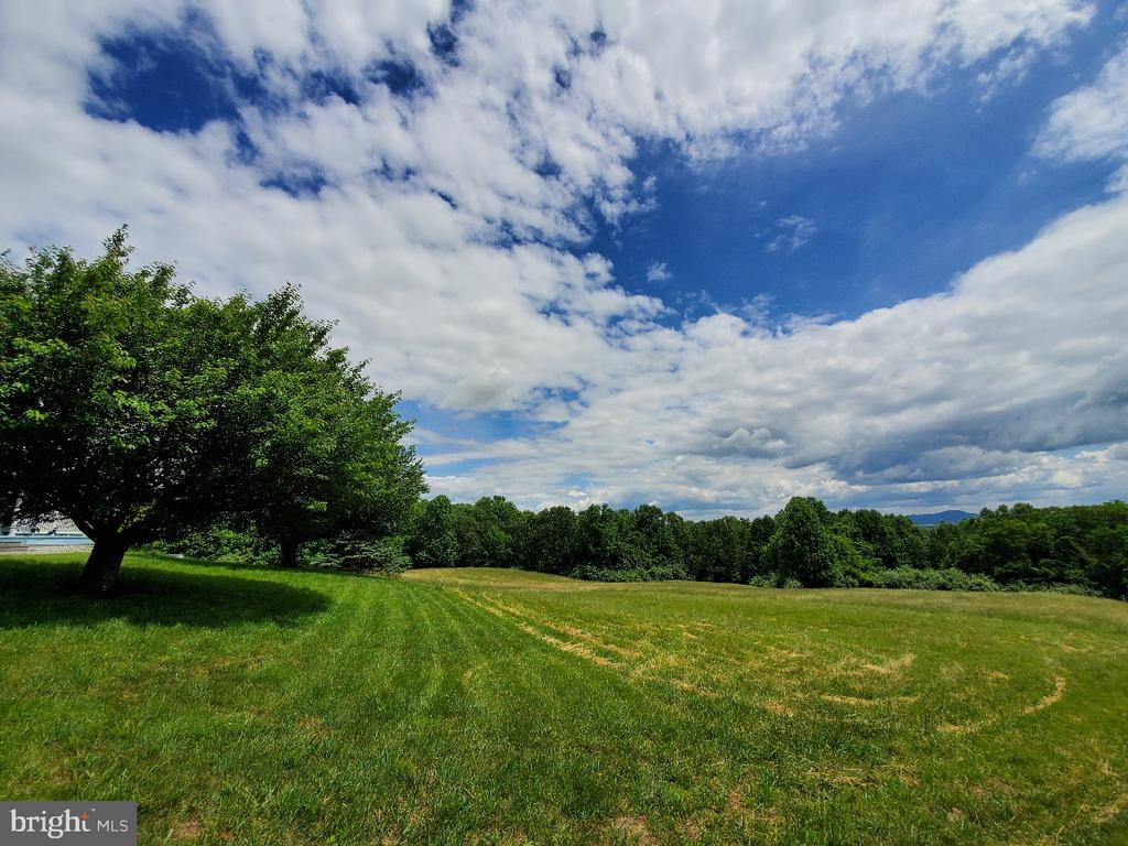 Beautiful land for pasture, crops, hay - 42064 BLACK WALNUT LN, LEESBURG