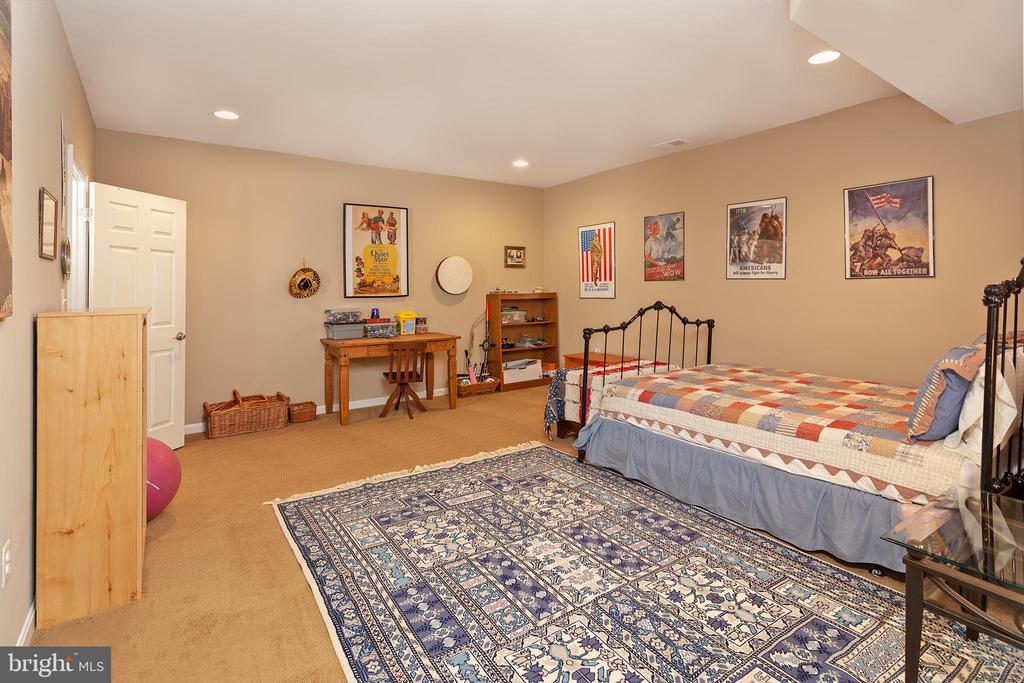 Huge Movie room/den on lower level! - 6313 STILL SPRING PL, ALEXANDRIA