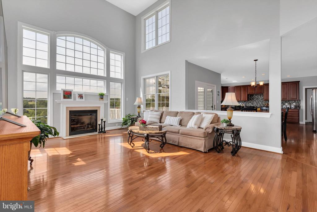 Family Room  w/ Gas Fireplace - 18131 PERTHSHIRE CT, LEESBURG