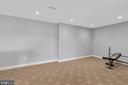 Lower Level Recreation Room - 18131 PERTHSHIRE CT, LEESBURG