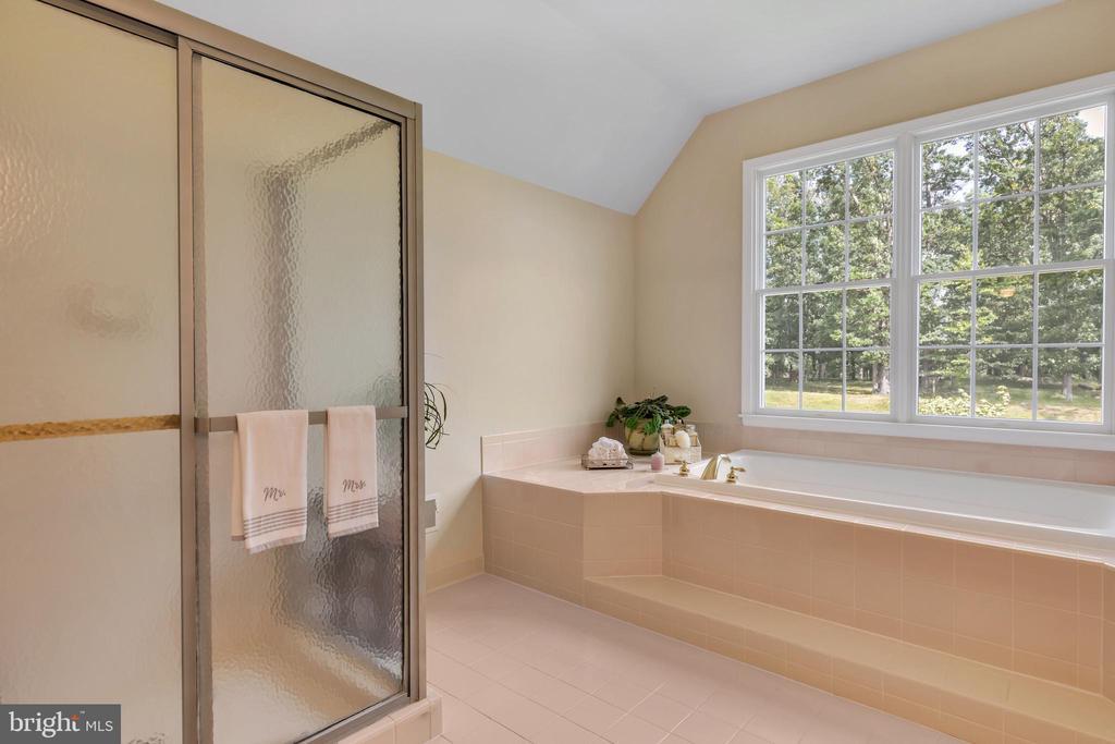 Master Bathroom - 18131 PERTHSHIRE CT, LEESBURG