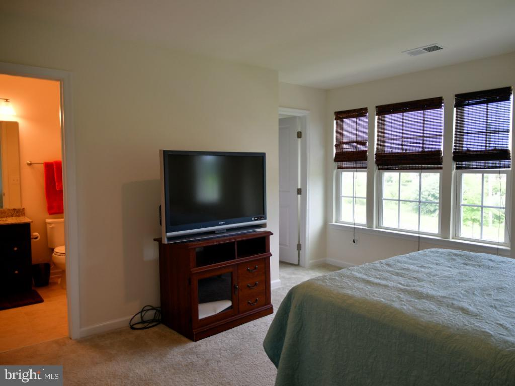 2nd Bedroom with its own full bath - 42483 MADTURKEY RUN PL, CHANTILLY
