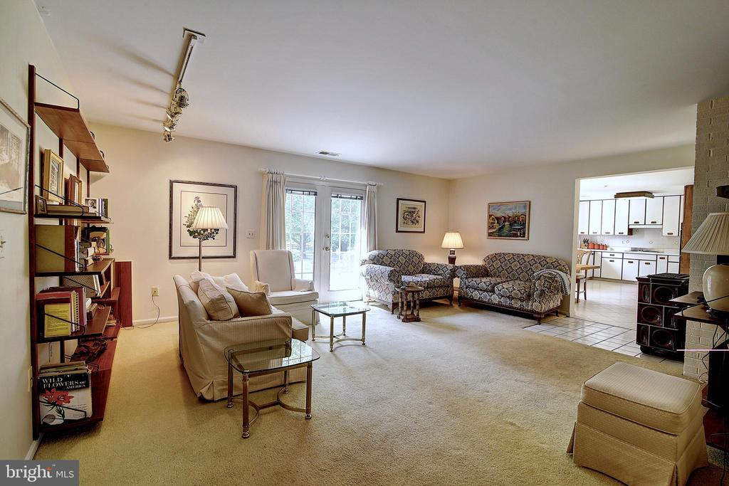 Family Room. - 23118 PANTHERSKIN LN, MIDDLEBURG