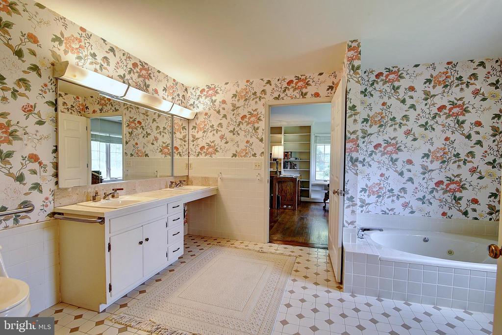Master Bathroom. - 23118 PANTHERSKIN LN, MIDDLEBURG