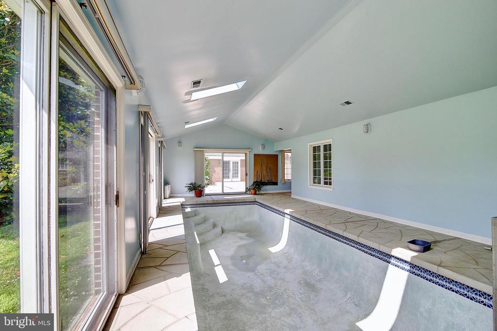 Pool. - 23118 PANTHERSKIN LN, MIDDLEBURG