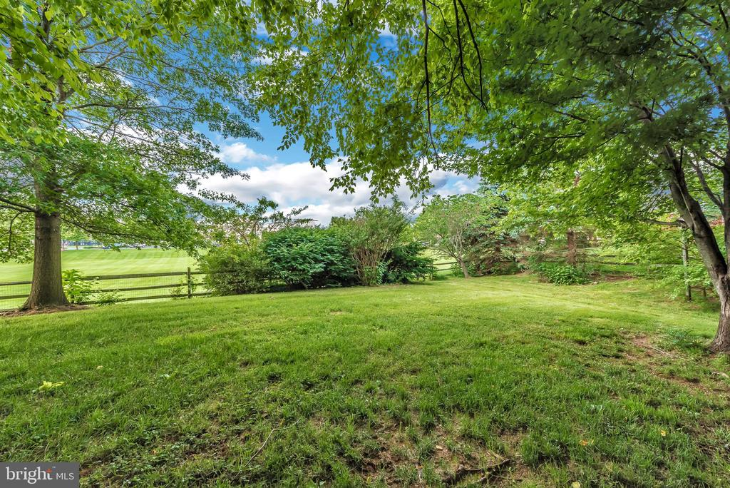 Lots of privacy and easy access to walking paths. - 1706 DEARBOUGHT CT, FREDERICK