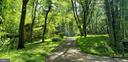 Lush green all around as you enter - 10209 WESTFORD DR, VIENNA