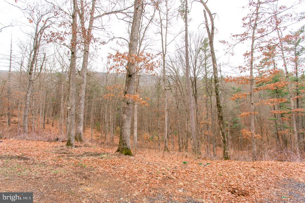 Additional photo for property listing at  Broadway, Virginia 22815 États-Unis