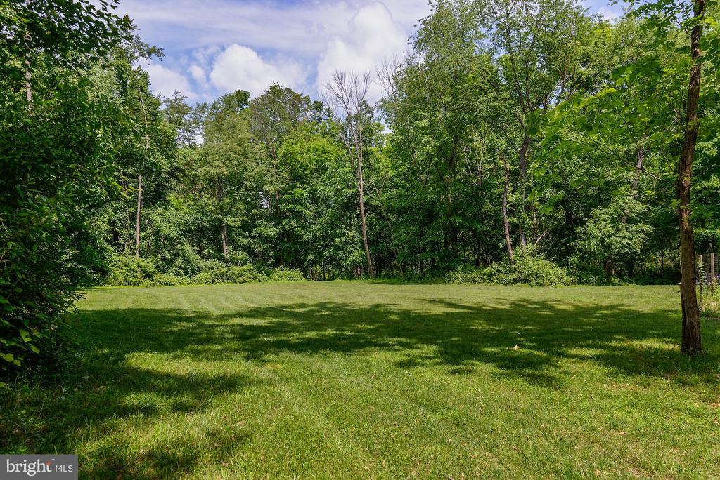 Open Pasture - 16339 WOODGROVE RD, ROUND HILL
