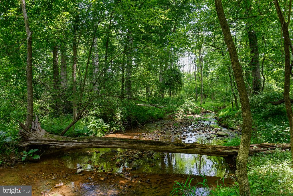 Park like setting  w/ miles of trails & a Stream - 16339 WOODGROVE RD, ROUND HILL