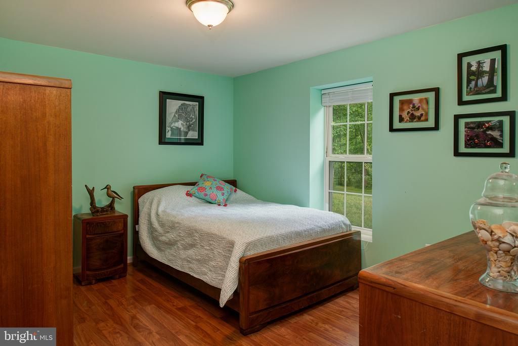 Basement Bedroom 5 - 16339 WOODGROVE RD, ROUND HILL