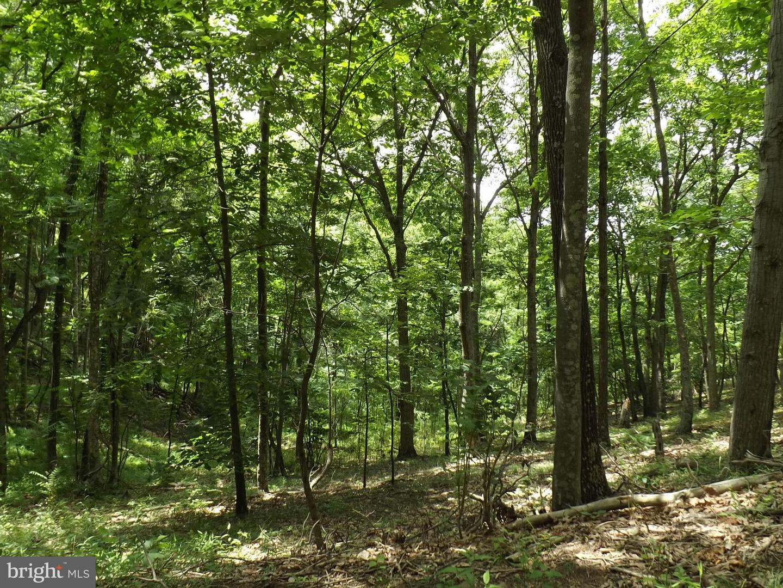 Terrain pour l Vente à Fort Ashby, Virginie-Occidentale 26719 États-Unis