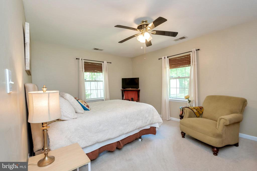 Master Bedroom with walk in closet - 107 PATTERSON AVE, FREDERICKSBURG