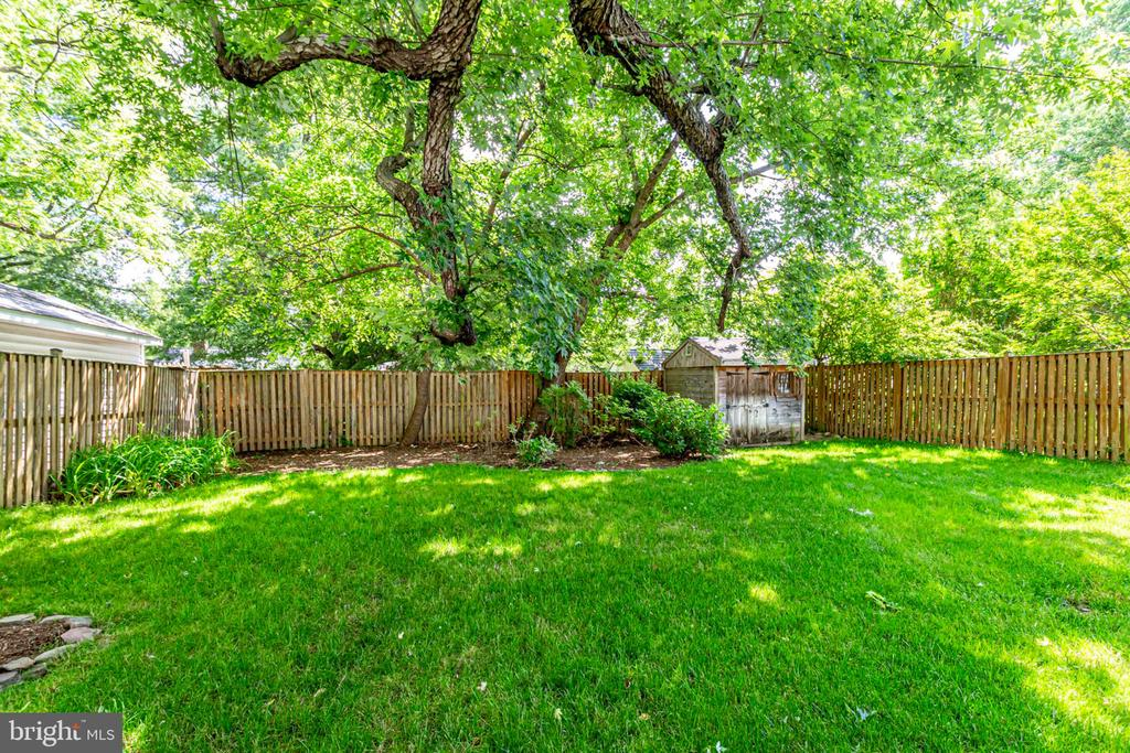 Expansive backyard - 1709 S QUINCY ST, ARLINGTON