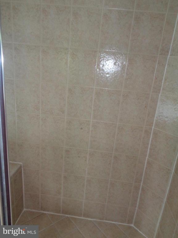 Owner's Shower - 4524 MOSSER MILL CT, WOODBRIDGE