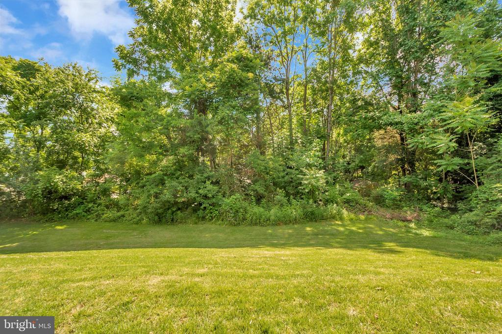 Side yard - 1043 S LAKESHORE DR, LOUISA