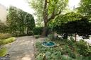 Camellias, boxwood, azaleas holly and mature trees - 639 S SAINT ASAPH ST, ALEXANDRIA