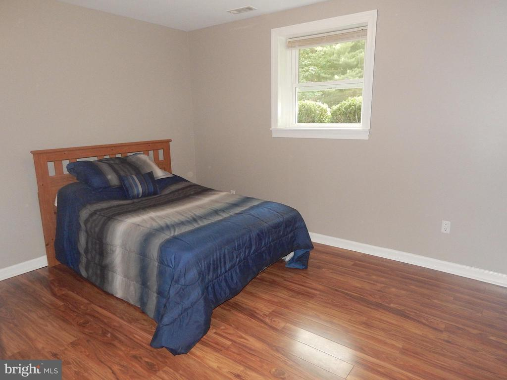 LL BR (NTC) w/updated paint, laminate floor - 340 ALBANY ST, FREDERICKSBURG
