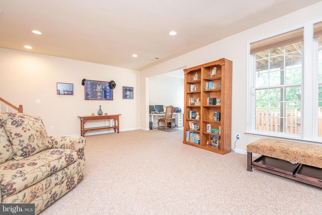 Huge Family Room on Lower Level - 21893 HAWKSBURY TER, BROADLANDS
