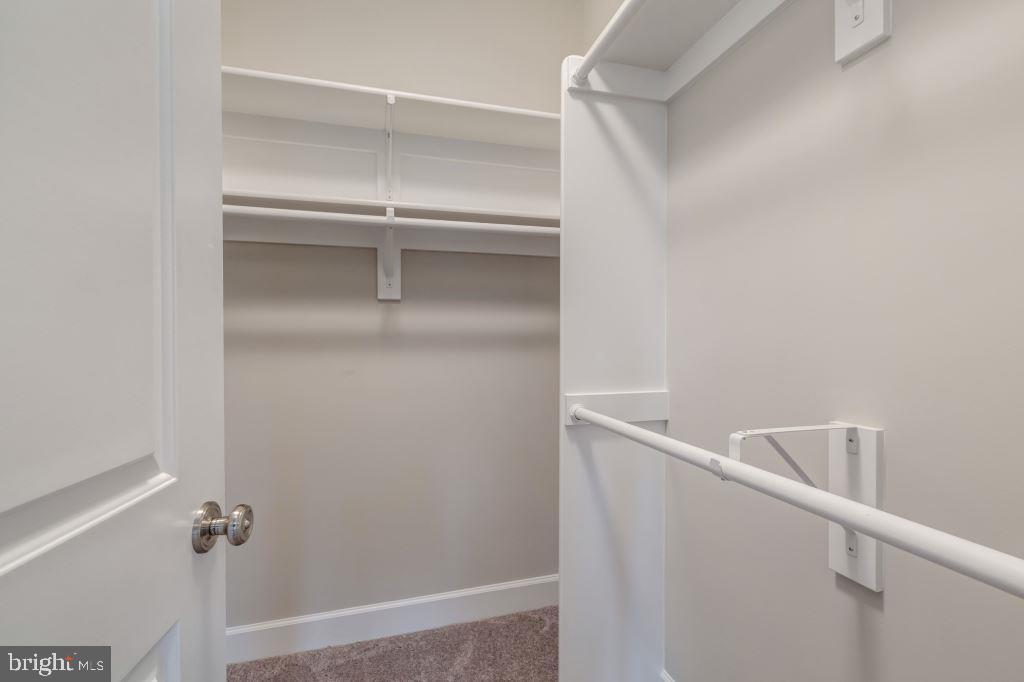 Walk-In Closet #3 - 10710 HARLEY RD, LORTON