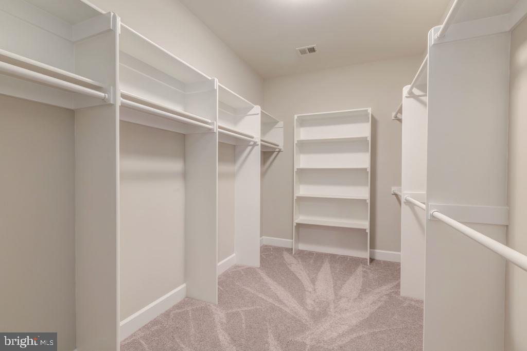 1st Walk-In Closet in Owner's Bedroom - 10710 HARLEY RD, LORTON