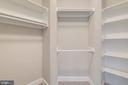 Walk-In Closet #5 - 10710 HARLEY RD, LORTON