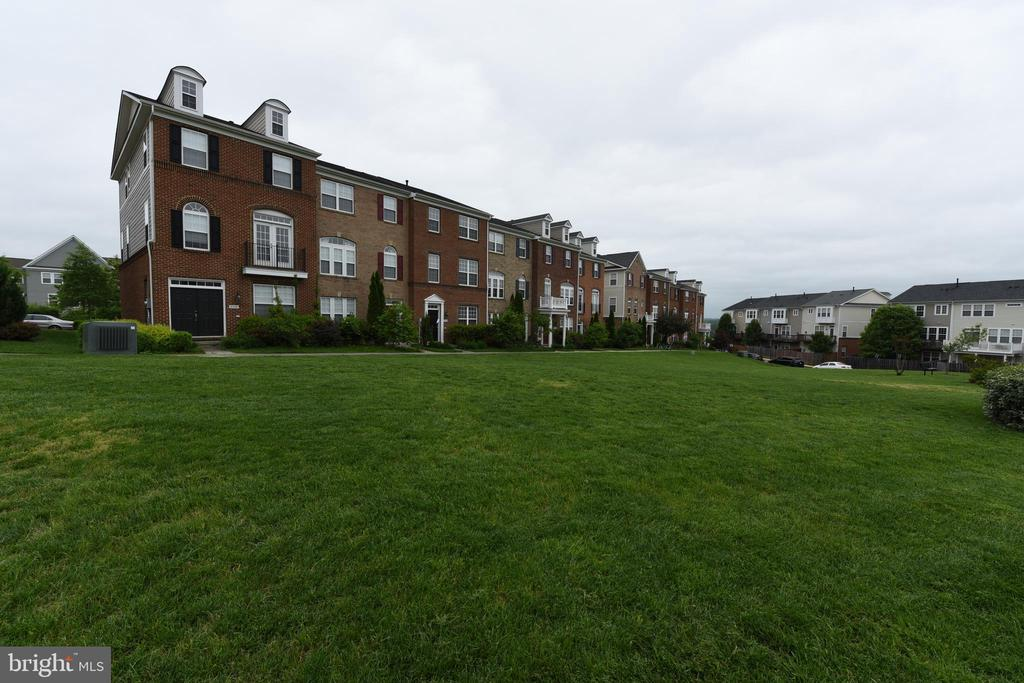 Spacious Common Area in front of house - 20932 HOUSEMAN TER, ASHBURN