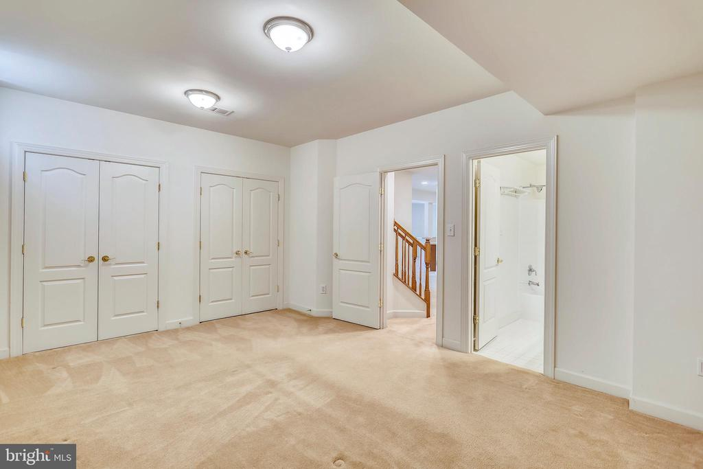Den with closets and full bath outside the door - 206 ROSE PETAL WAY, ROCKVILLE