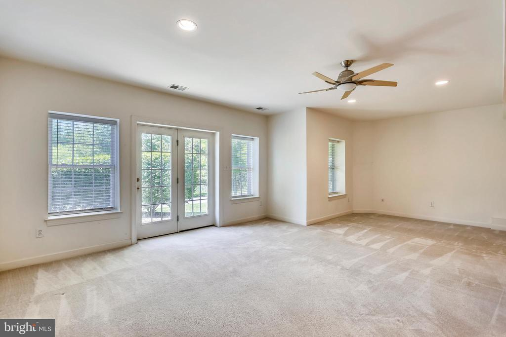 Walk-out lower level RR with recessed lighting - 206 ROSE PETAL WAY, ROCKVILLE