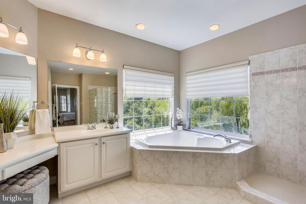 MBA with Jacuzzi corner tub - 206 ROSE PETAL WAY, ROCKVILLE