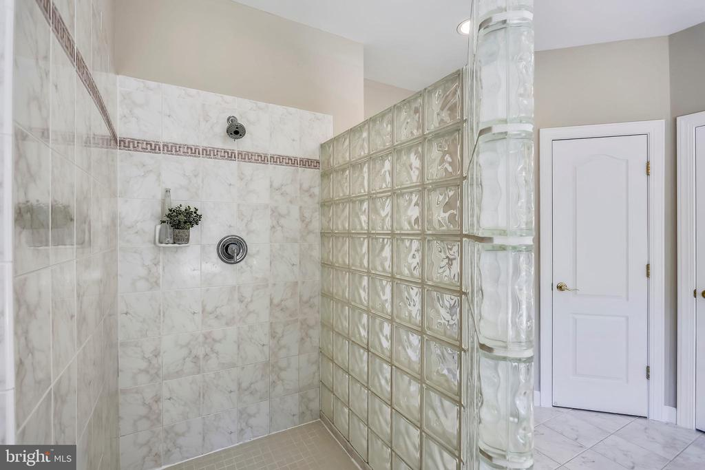 Walk-in shower with glass block wall - 206 ROSE PETAL WAY, ROCKVILLE