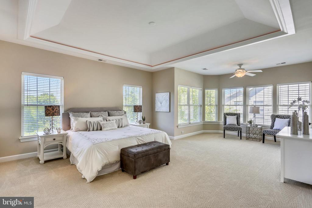 MBR with tray ceiling and uplighting - 206 ROSE PETAL WAY, ROCKVILLE
