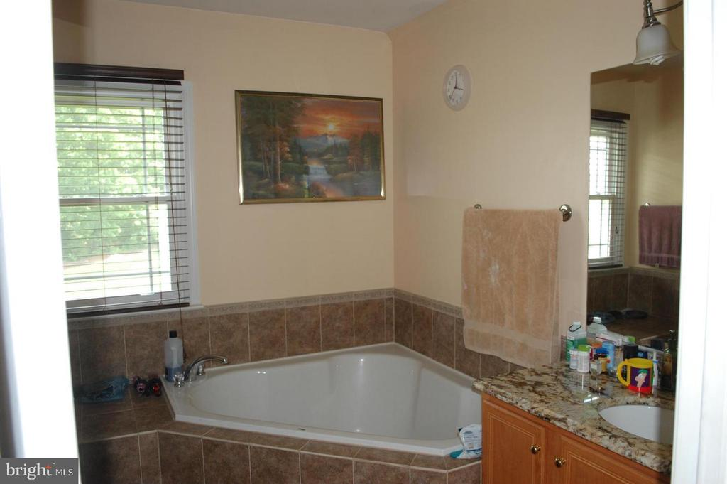 Master Bath w/ Soaker Tub - 17608 OVERLOOK RD, DUMFRIES