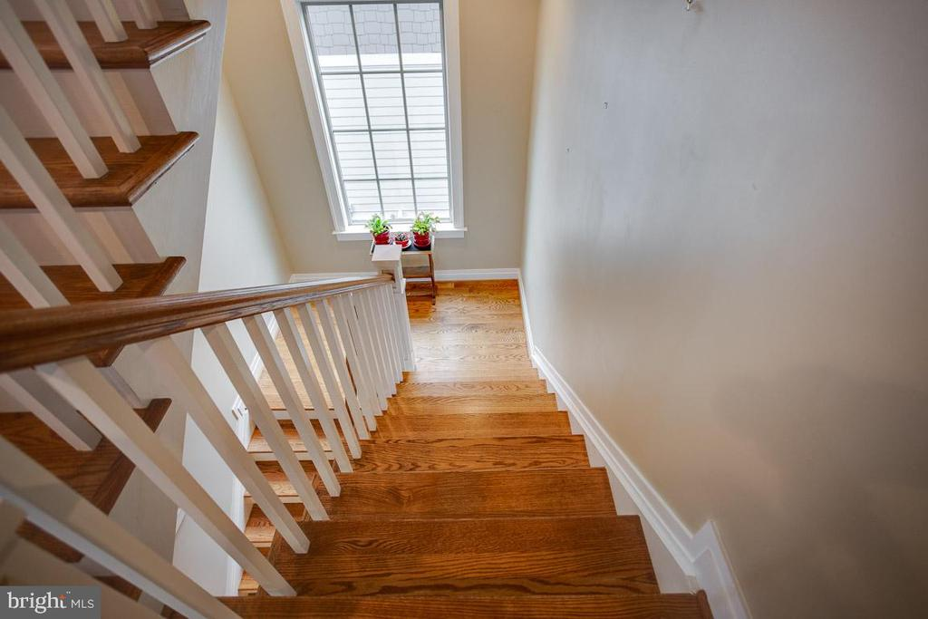 Basement Stairs - 2020 S KENT ST, ARLINGTON