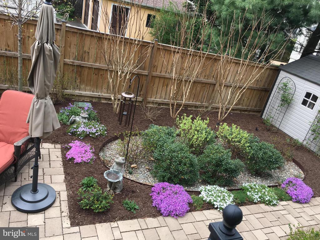 Flowers Blooming in the Spring - 2020 S KENT ST, ARLINGTON