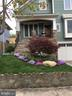 Spring Bloom - 2020 S KENT ST, ARLINGTON