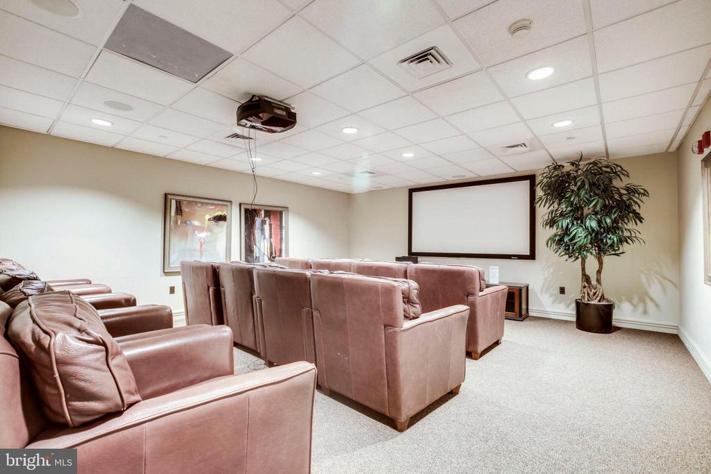 Theater Room - 880 N POLLARD ST #602, ARLINGTON