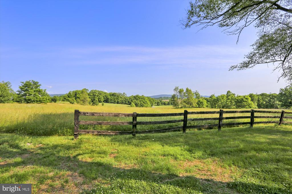 View in Back Yard - 39085 IRISH CORNER RD, LOVETTSVILLE