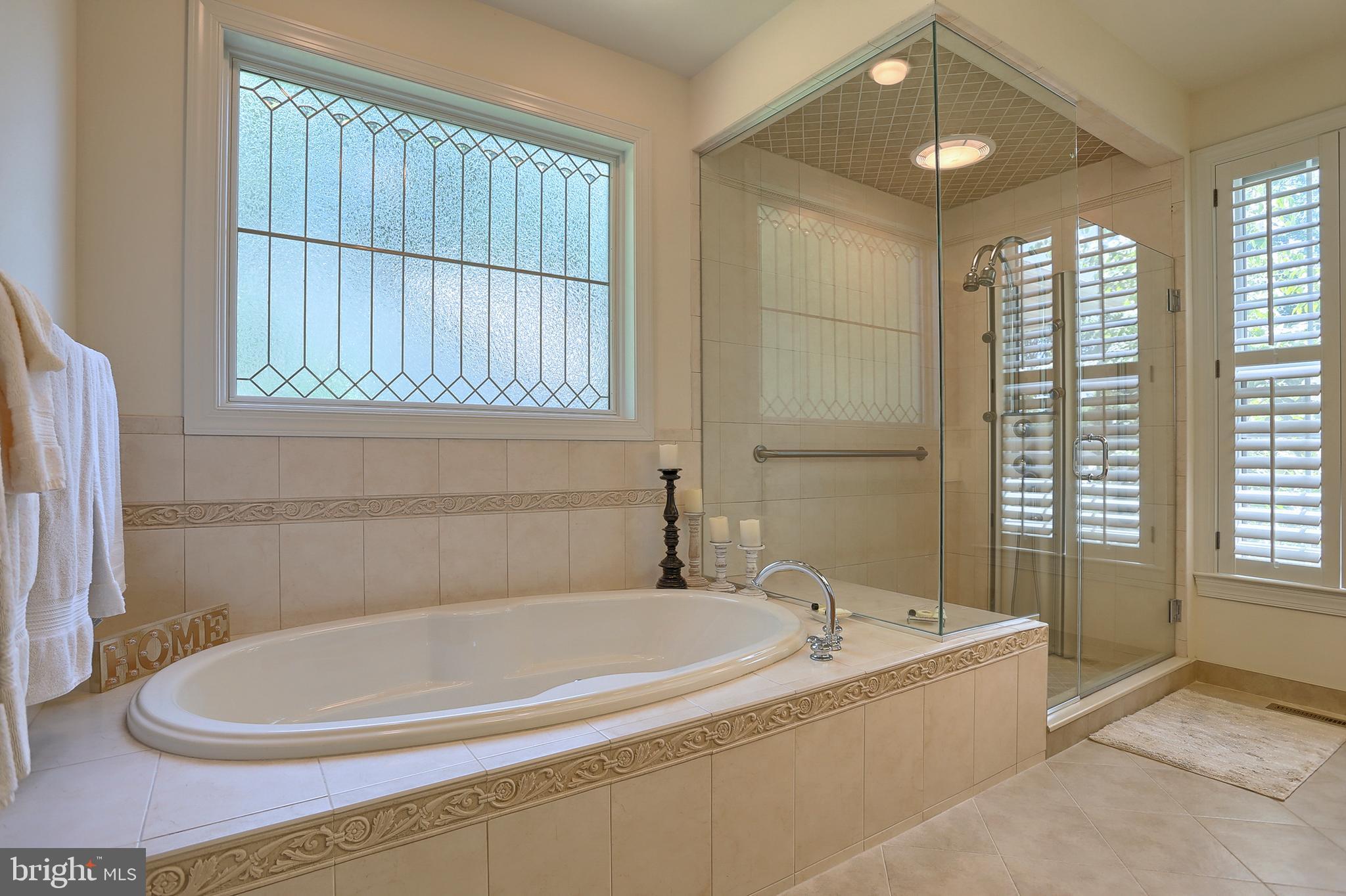 Master Bath soaking tub & walk-in shower