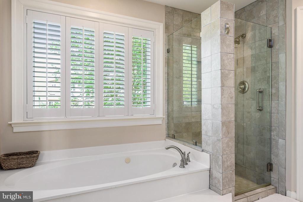 Separate tub and frameless shower - 43365 WAYSIDE CIR, ASHBURN
