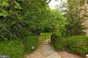 Backyard - 916 MACKALL AVE, MCLEAN