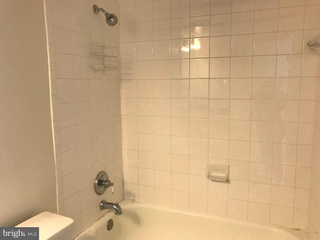 Bathrom tub & Shower - 3629 38TH ST NW #304, WASHINGTON