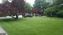 Front Yard - 7028 31ST ST NW, WASHINGTON