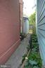 Your private alley with beautiful hosta garden - 235 W 5TH ST, FREDERICK