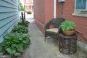 Hosta garden all along private, gated alley - 235 W 5TH ST, FREDERICK